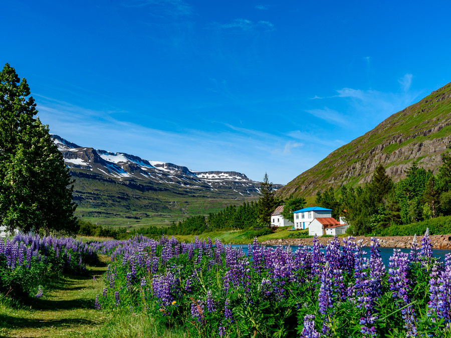 Seydisfjordur. Islandia