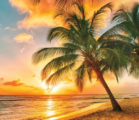 Playa de Barbados