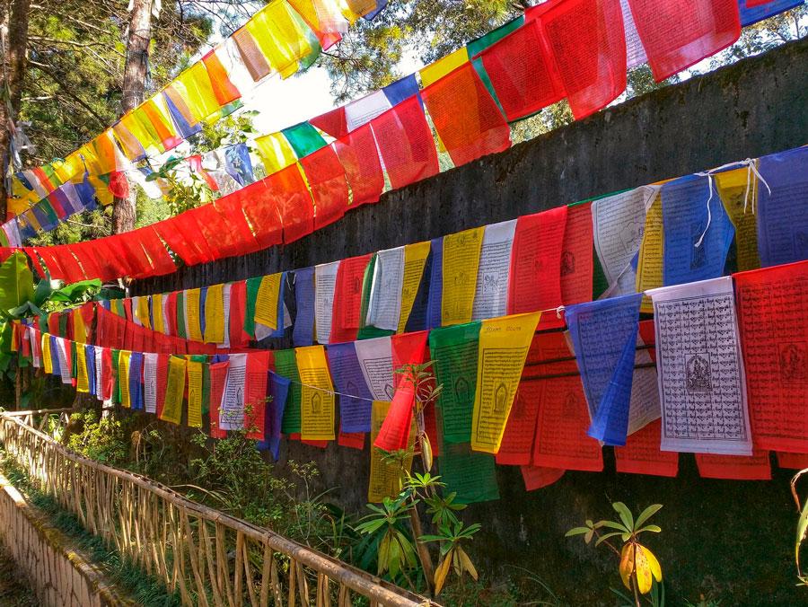 Monasterio de Enchey, Gangtok, Sikkin, India
