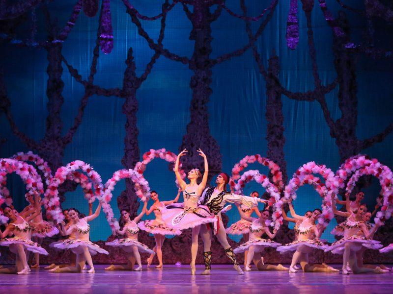 Performance Ballet El Corsario. Teatro Bolshói
