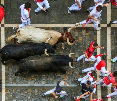 Encierros de San Fermín, Pamplona