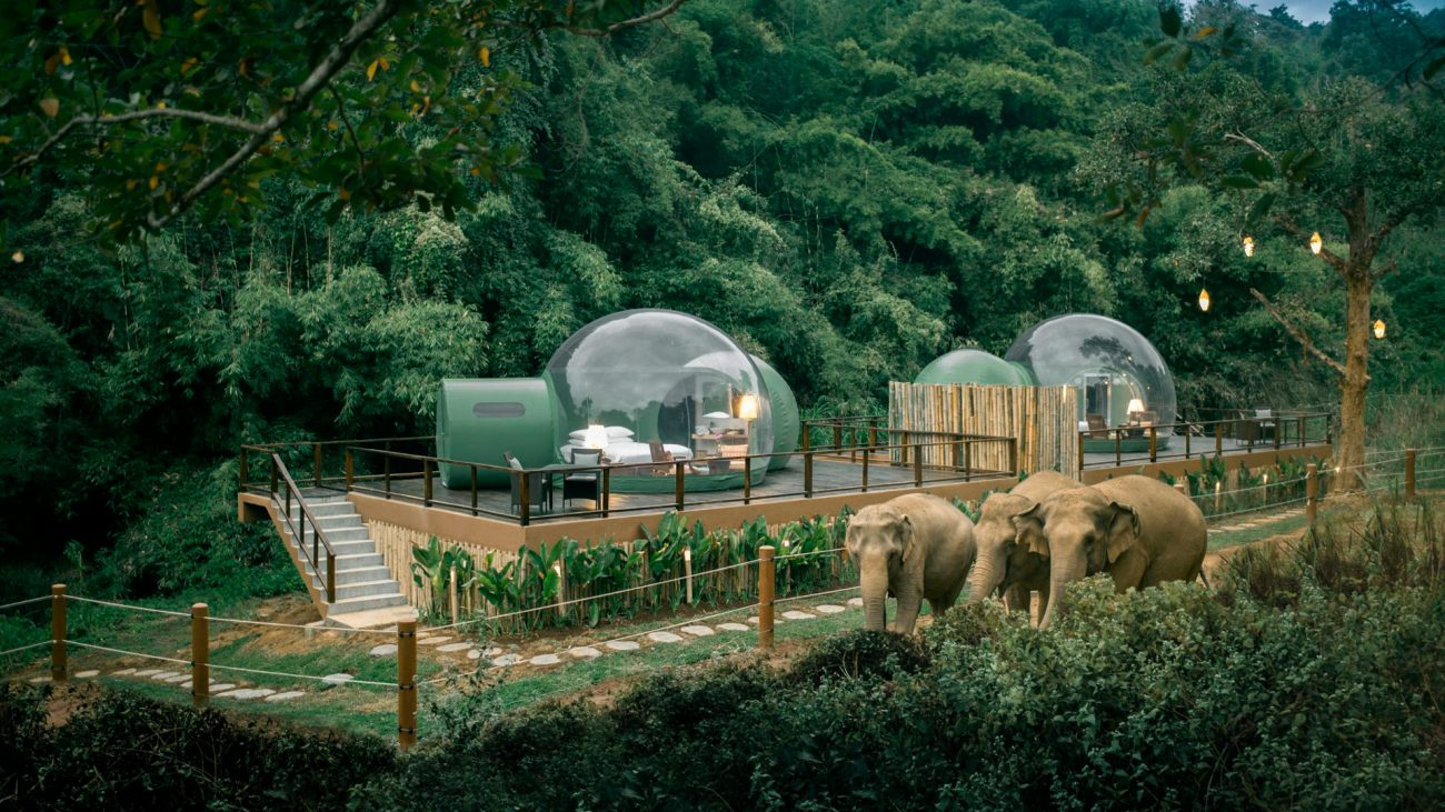 Anantara Jungle Bubbles