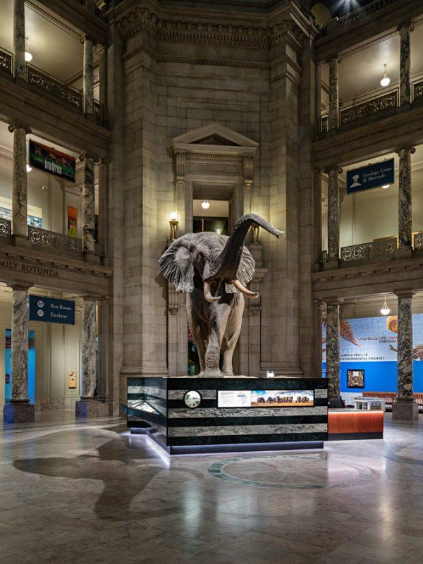 Museo Smithsonian de CIencias Naturales de Washington