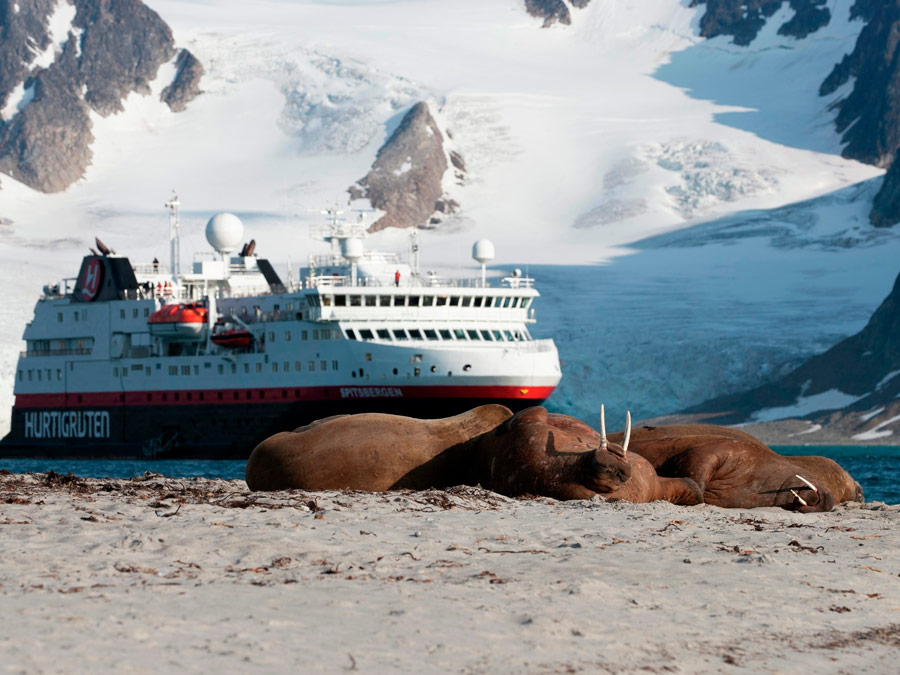 Smeerenburgodden, Svalbard
