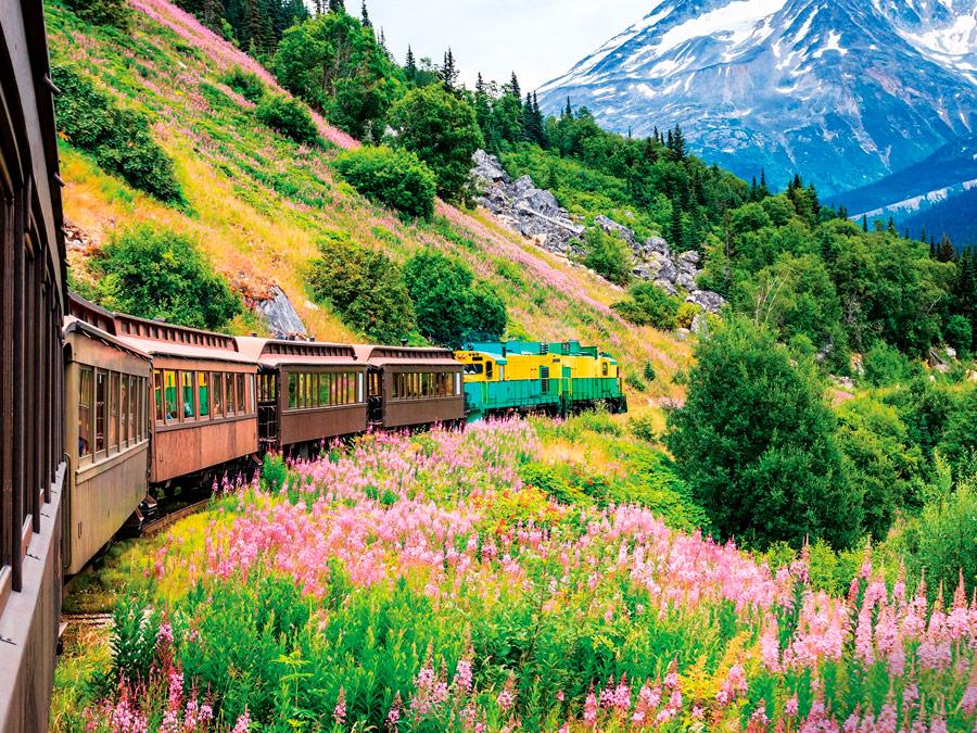 Flores en Alaska