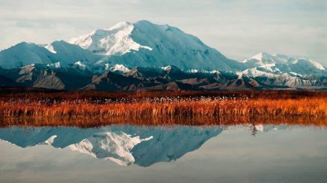 Parque Nacional Denali, Alaska