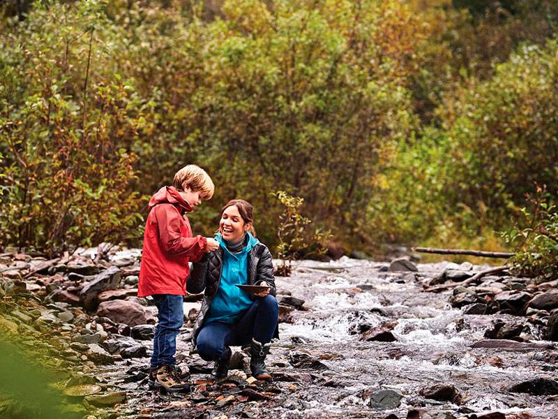 Excursiones en Juneau